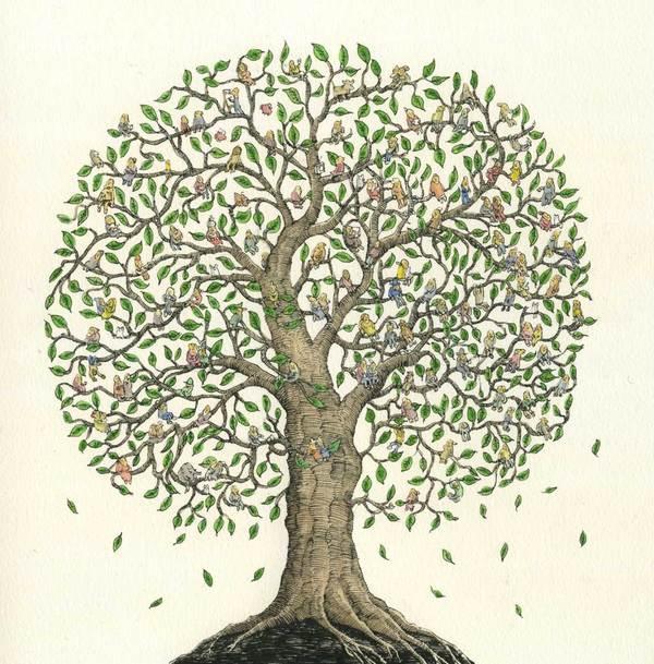Mattias Adolfsson ToMyGrandchild 20 Ilustraciones para cuentos infantiles