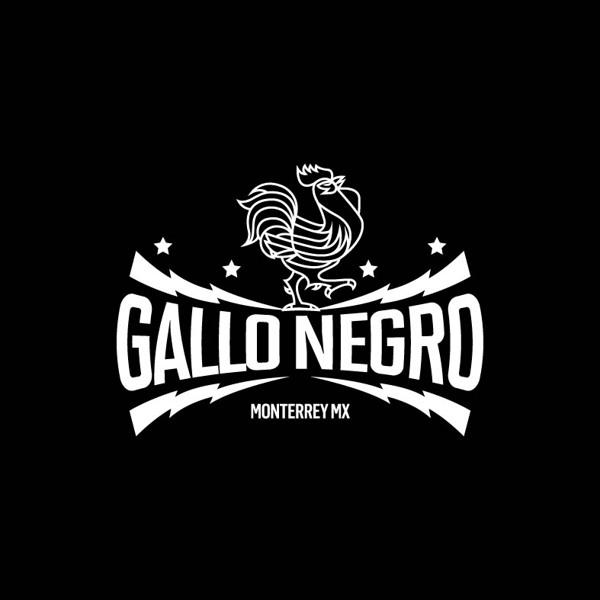 gallo_negro_1