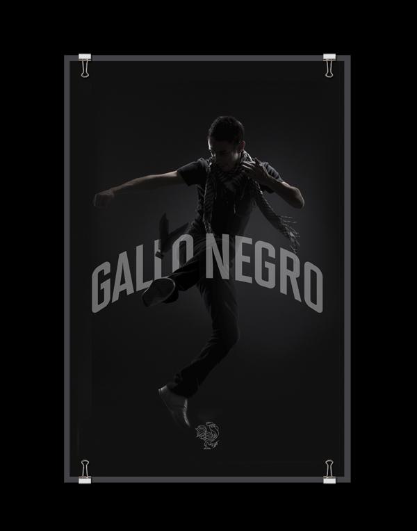 gallo_negro_6